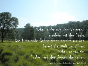 Text: Prophezeiungen von Celestine Foto: Karin Wiesemes
